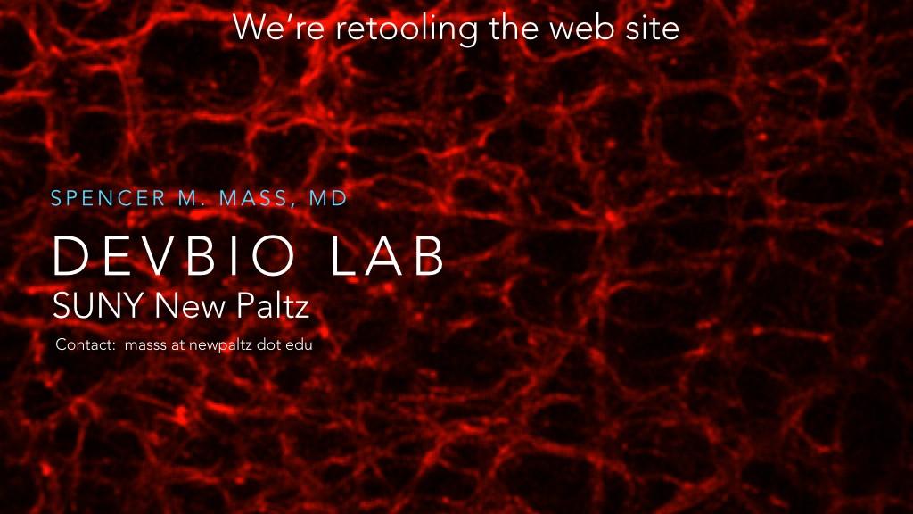 Retooling our website