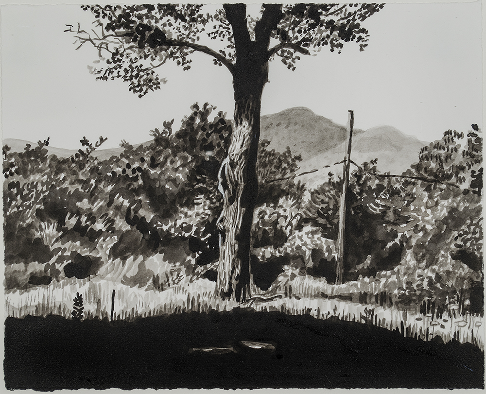 Beaver Lake House–Grounds, 2016 Ink on Paper, 9 ½ x 12 in.