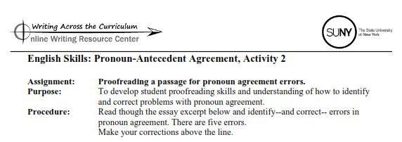 English Skills Lesson 4 PronounAntecedent Agreement Activities – Pronoun Antecedent Agreement Worksheet