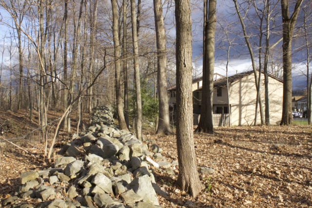 The rock formation demarcating the property line does little to stop the proliferation of Lyme.